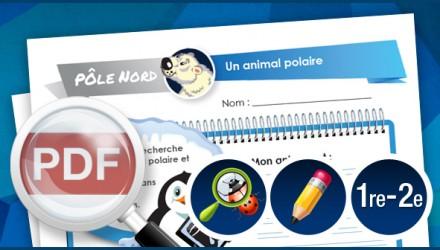 Un animal polaire -1re-2e