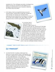 LaFeuilleMobile_pole-Nord_Pingouin-ou-manchot_3-5-02
