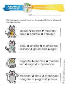 LaFeuilleMobile_Animaux-domestiques_Comment-est-le-chat_preview1